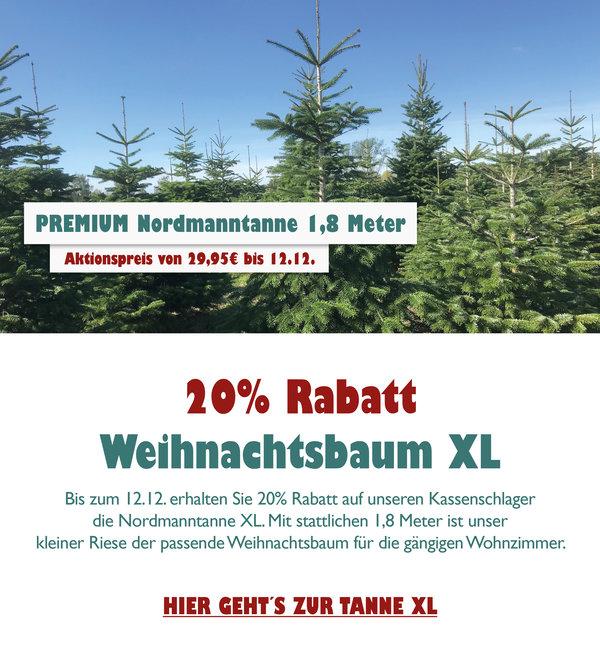 Nordmanntanne Weihnachtsbaum.Paderbaeumchen Shop De